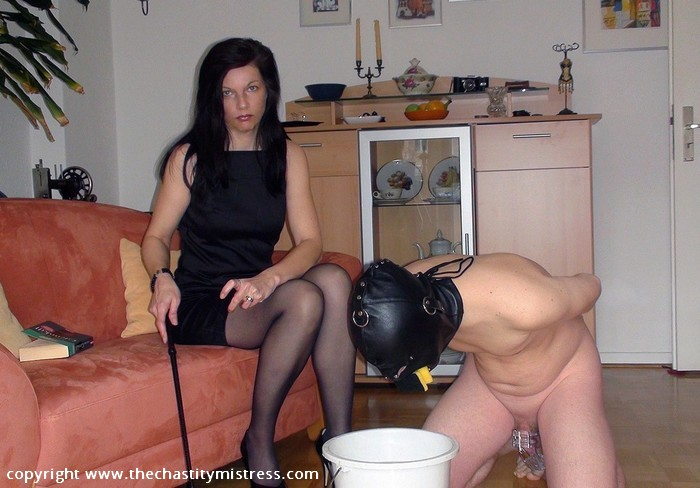 Chastity female domination